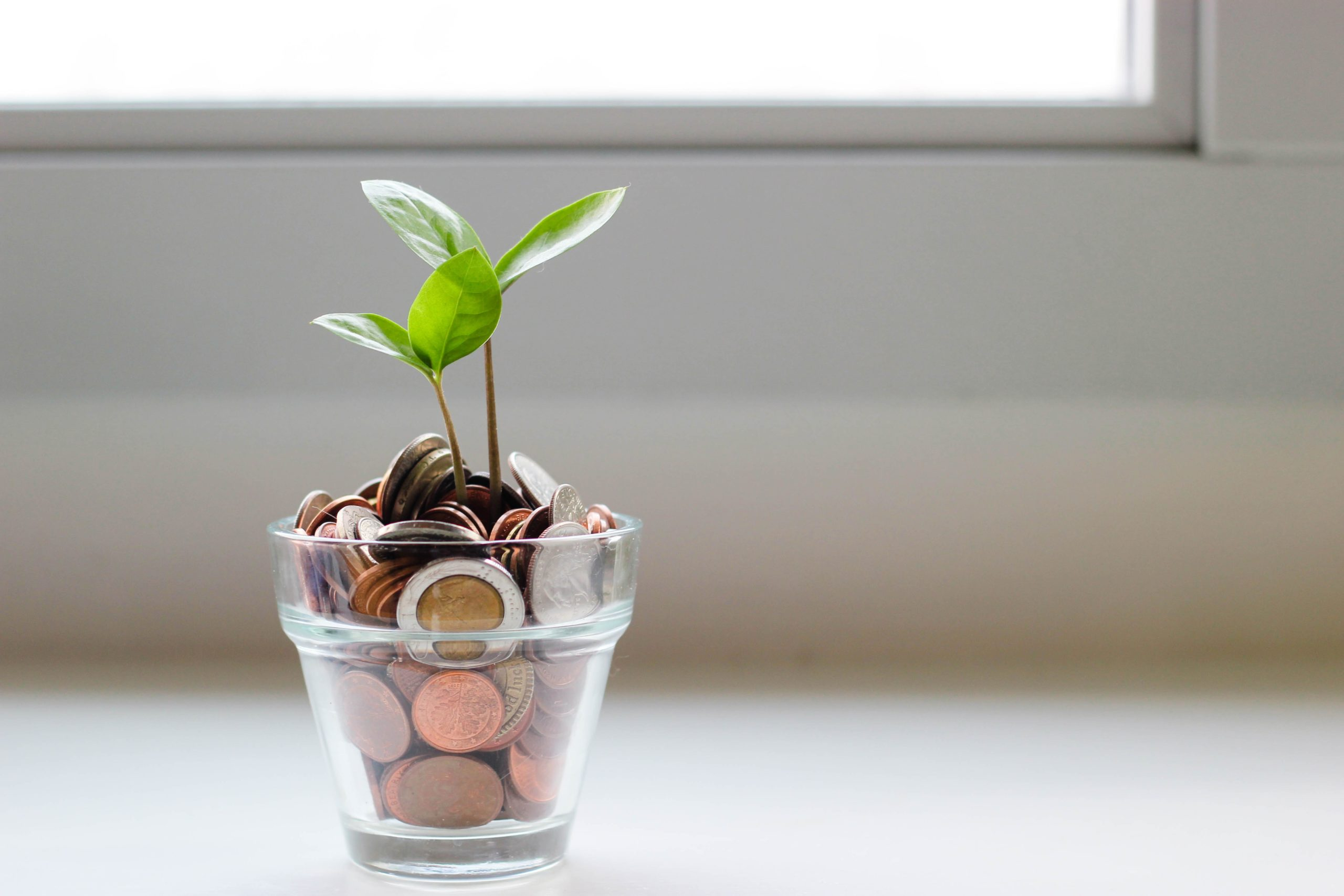 5 dicas financeiras para jovens | Certezza seguros